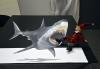 anamorph_shark_10
