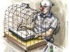 Freedom of the Cartoonist